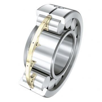 360 mm x 600 mm x 192 mm  FAG F-800479.ZL-K-C5 cylindrical roller bearings